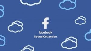 biblioteca musica facebook